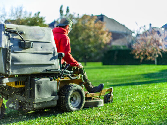 commercial landscaping barnstable